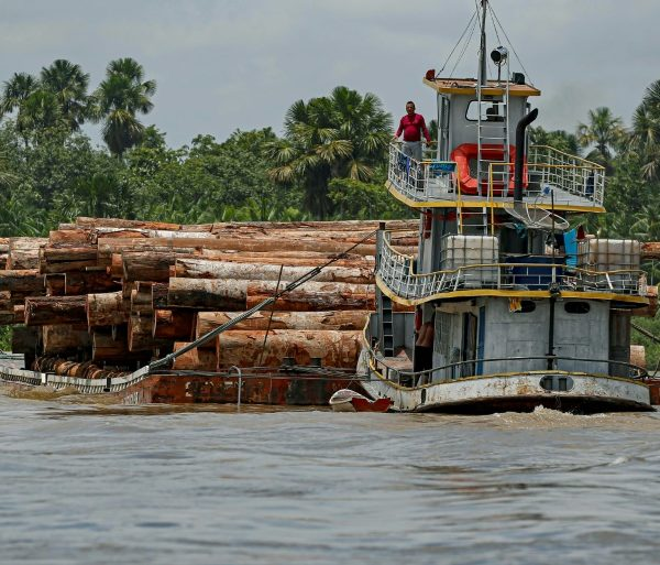 Deforestation of Brazilian Amazon hits record in April
