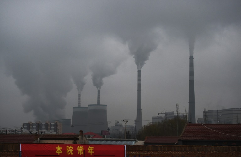 IMF urges top polluters to adopt carbon price floor