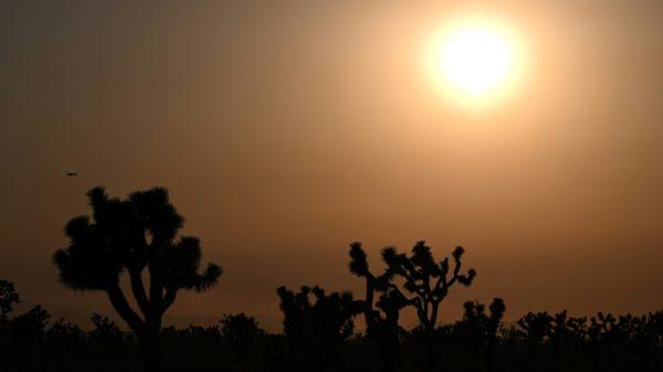 Climate 'mysteries' still puzzle scientists, despite progress