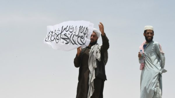 Taliban leader 'favours political settlement' to Afghan conflict: statement