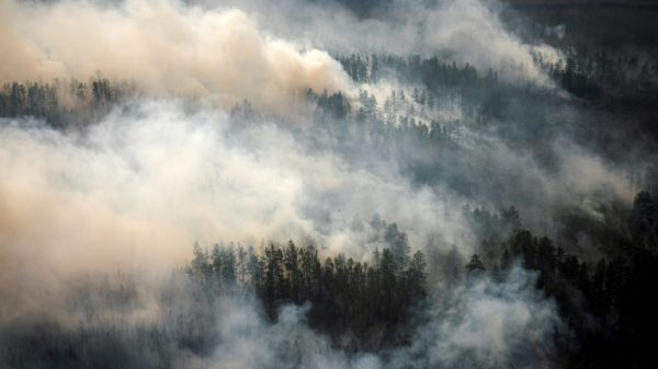 'Our homeland is burning': Volunteers join Siberia wildfire fight