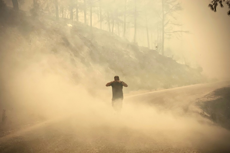 Turkey battles forest fires for fourth day