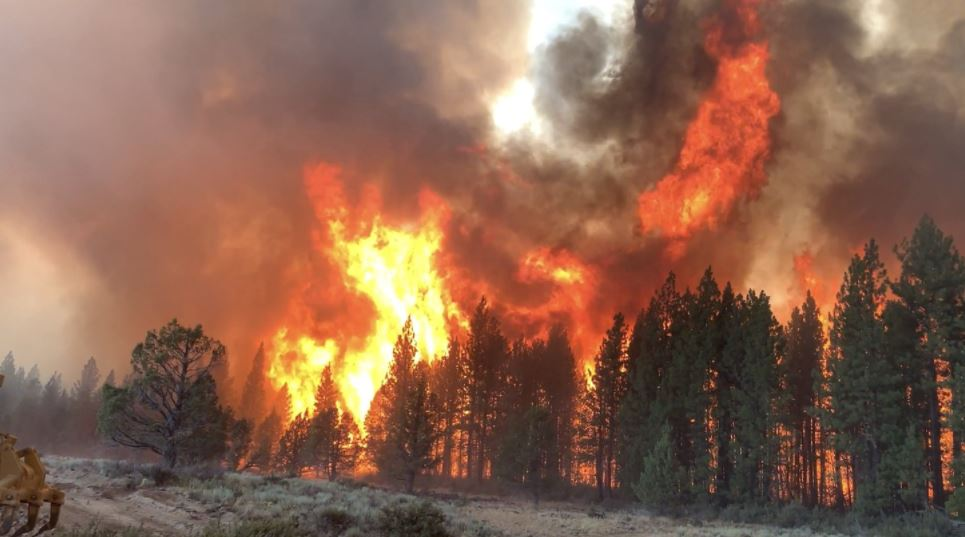 Oregon wildfire has become the biggest in the nation, scorching over 200,000 acres