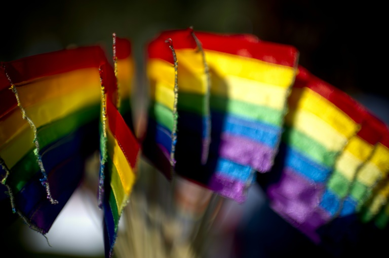 Chile senators approve gay marriage bill; one step left