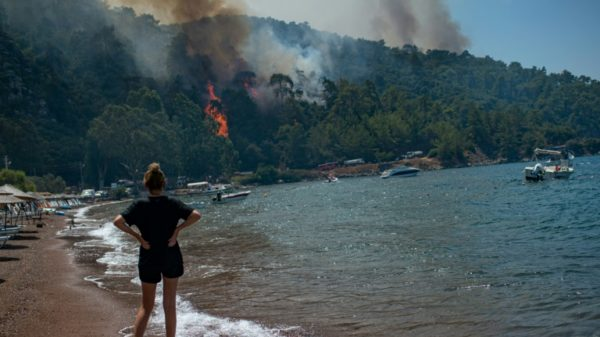 Deadly wildfire encircles Turkish power plant