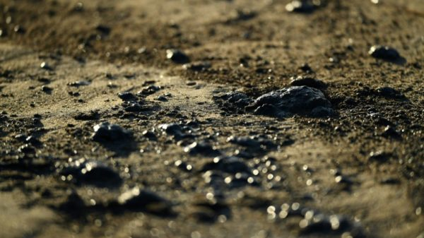 California authorities rush to mitigate impact of major oil spill