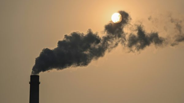 Greenhouse gas levels reach new record high: UN