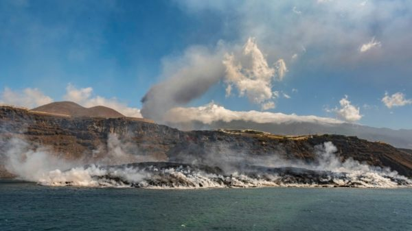 Drone rescue plan for dogs trapped by Spanish island eruption