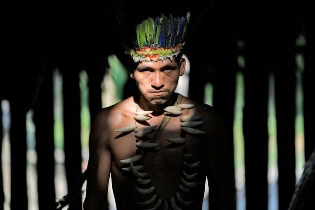A Colombian Huitoto indigenous man. A mounting body of evidence suggests that legal recognition of i...