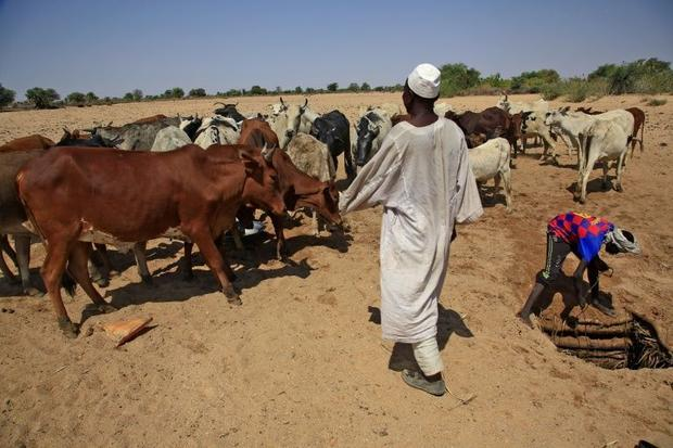 Inter-communal violence in Darfur has often been associated with livestock and access to precious wa...