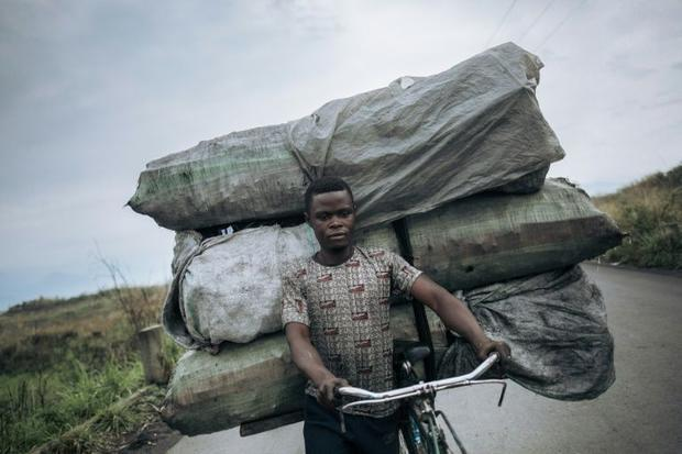The trade in charcoal is worth millions of dollars and is attracting armed groups to the Goma area  ...