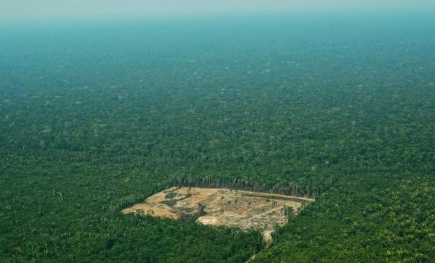 An aerial view from 2017 of deforestation in the Western Amazon region of Brazil  whose President Ja...