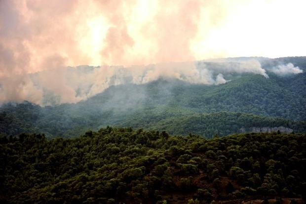 Scorching hot weather set the conditions for Greece's deadly wildfires