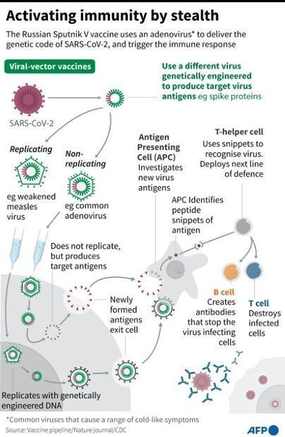 Viral vector vaccines