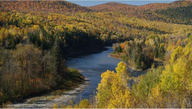 Matapedia River at Spawning Time