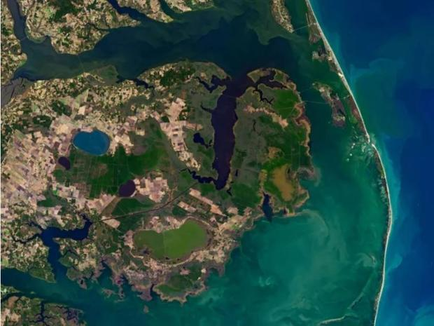 Inland-creeping saltwater is changing U.S. coastal wetlands  and now you can see the effects from sp...