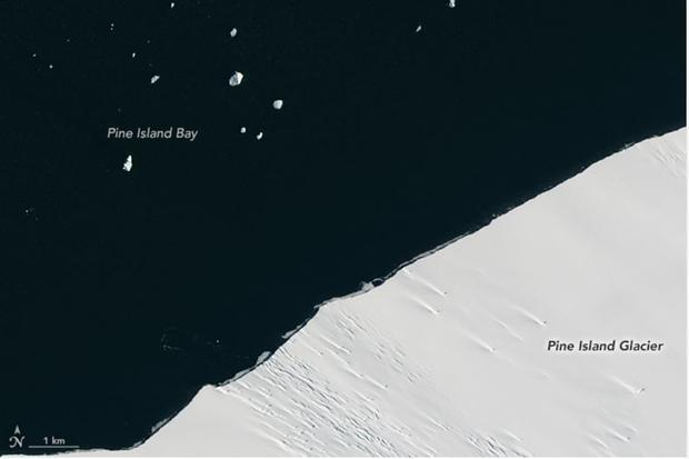 Ice edge of Pine Island Glacier on January 24  2017.