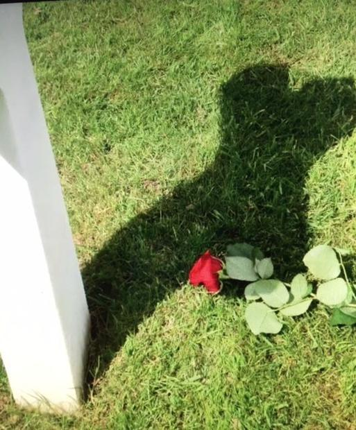 A rose is placed on each of the graves by volunteers who wish to pay their respects to the Americans...