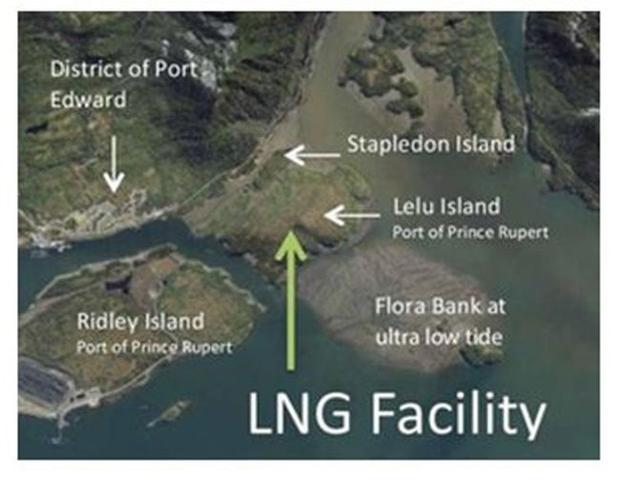 Pacific Northwest LNG s potential facility site on Lelu Island.