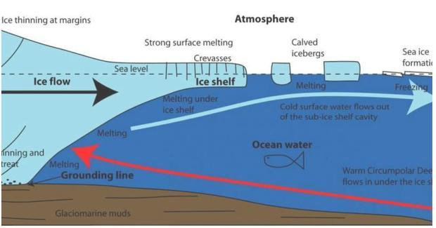 Ice melt at the grounding line contributes to seawater and thus sea levels  but the larger effect is...