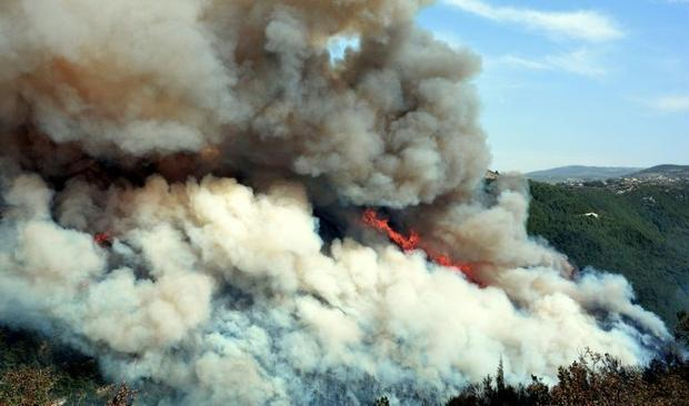 Forest fires have erupted in large swathes of land in Lebanon and Syria