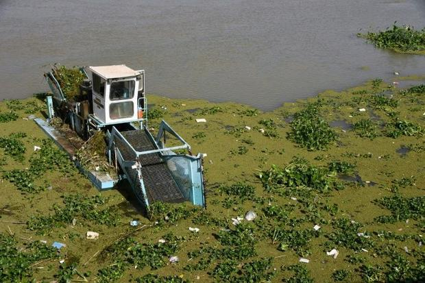 A boat removes Eichhornia crassipes  commonly known as water hyacinth  from the surface of the Euphr...