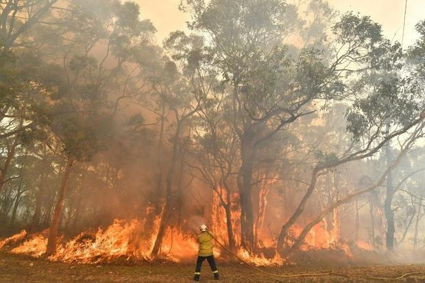 Scientists say Australia's fire seasons are beginning earlier and burning with more ferocious i...
