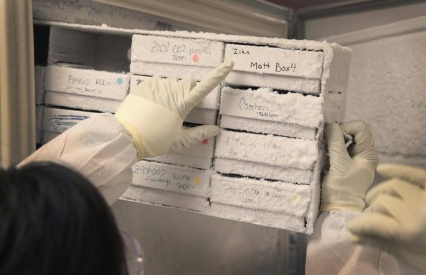 Several other vaccines have 'cold-chain profiles'  but Pfizer's needs supercool stora...