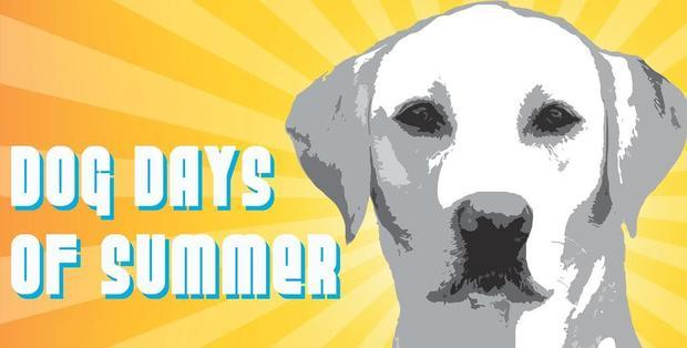 Dog Days of Summer  is a social mixer to raise awareness to the importance of guide dogs and the wo...