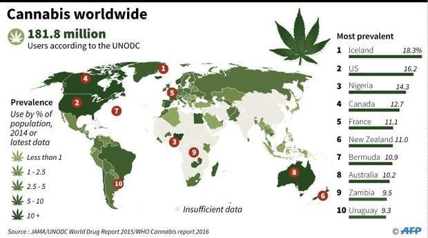 Cannabis worldwide