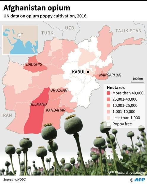 Afghanistan's opium