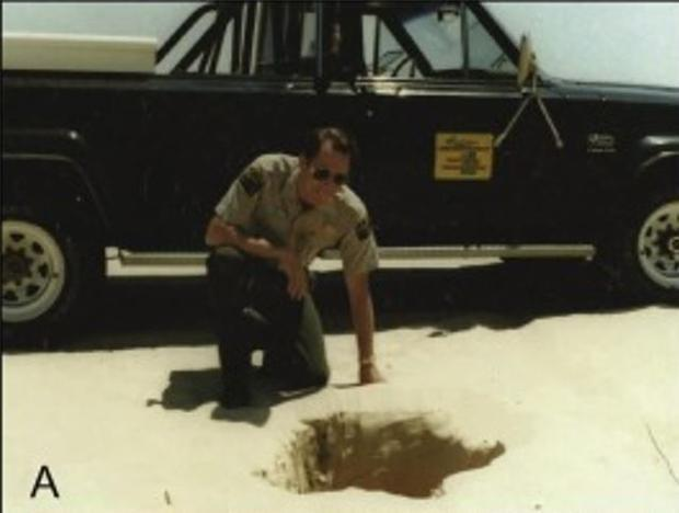 Photograph of a hole found at Silver Lake State Park  Mears Michigan in 1985 with a pine limb visibl...