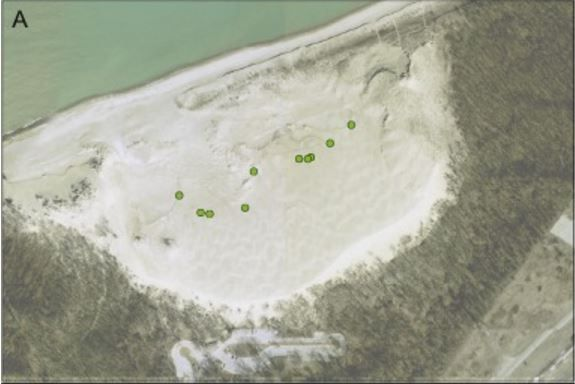 Aerial photograph of Mt. Baldy showing the position of holes (green circles) in 2013.