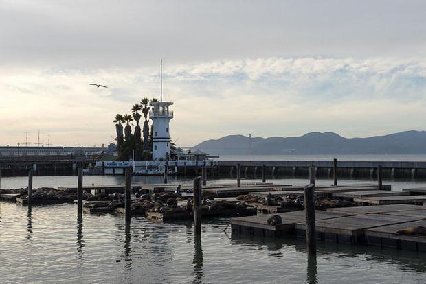 San Francisco s Pier 39