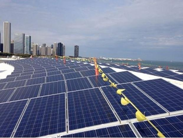 Shedd's 265-kilowatt solar panel project is a highlight in itself—it is the largest installation...