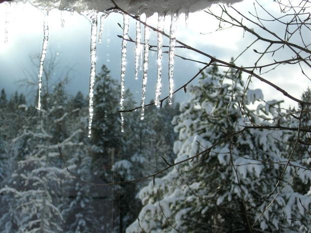 A rare moment of sunshine sets these icicles sparkling.