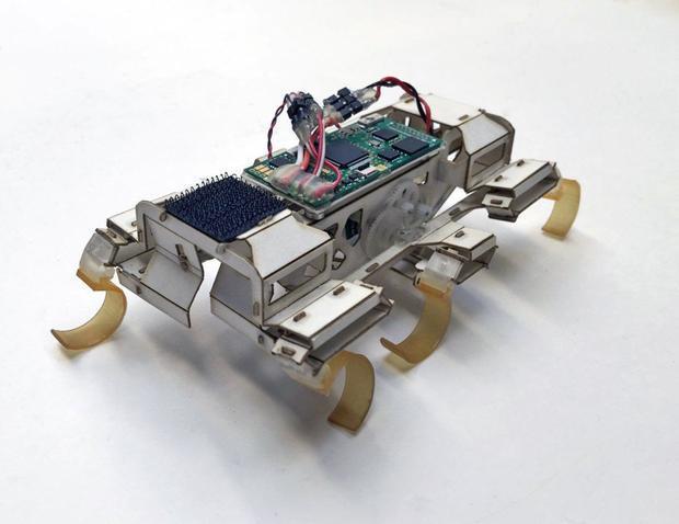 The six-legged cockroach-inspired VelociRoACH robot.