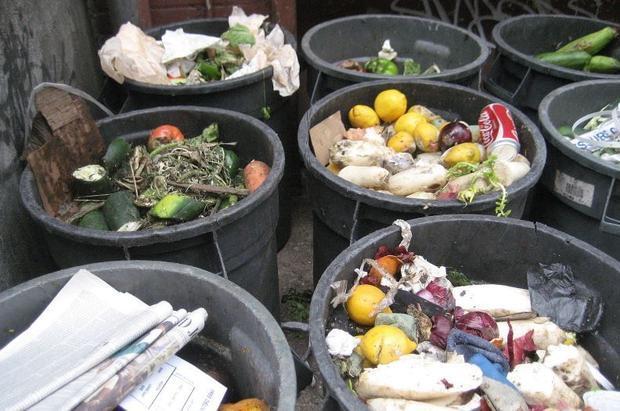 household food trash in New York City  New York.